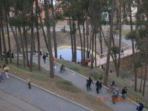 Vista de ciclovia del parque